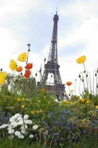 La tour Eiffel, en pleine nature