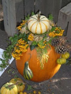 It's pumpkin time again! See 8 pretty ones here - Floral Garden Ideas Seasonal Decor, Fall Decor, Art Floral Noel, Fall Arrangements, Autumn Decorating, Deco Floral, Autumn Crafts, Fall Projects, Deco Table