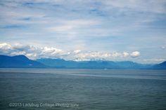 West Coast - LADYBUG COTTAGE PHOTOGRAPHY #10