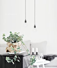 simple pendant lighting white walls candles grey sofa and interior plant in brown paper bag wrapped pot black dresser white end table