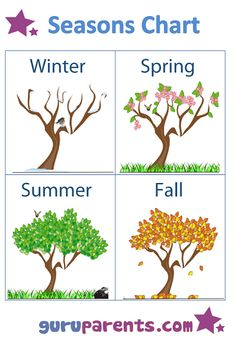 See 6 Best Images of Printable Seasons Chart. Baby Learning Activities, Seasons Activities, Preschool Learning Activities, English Activities, Preschool Worksheets, Kids Learning, Learning Spanish, Teaching Weather, Preschool Weather