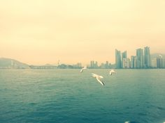 Busan #southkorea