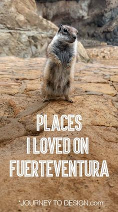 The places I loved (and the places I hated) on Fuerteventura - journeytodesign.com Love, Places, Amor, Lugares