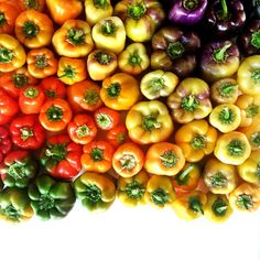 """My favorite find at yesterday's market, bell pepper #foodgradients."""