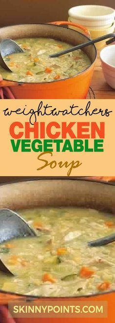 Chicken Vegetable Soup with only 2 Weight Watchers Smart Points