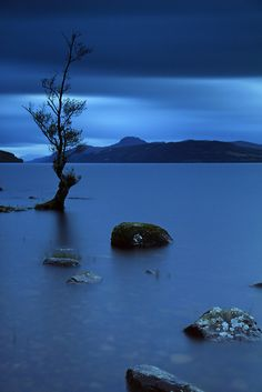 Blue Hour. by Gordie Broon., via Flickr