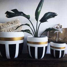 Betonstory :: she continues … - How To ForgeBilderesultat for beton in ballon Bottle Painting, Bottle Art, Bottle Crafts, Painted Plant Pots, Painted Flower Pots, Flower Pot Design, Pottery Painting Designs, Flower Pot Crafts, Cement Pots
