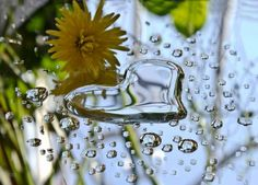 Today is a rainy day,and I hate rain,but sometimes even a thing like that can be useful and romantic. The Power Of Love, Peace And Love, My Love, Happy Heart, Love Heart, Heart In Nature, Dancing In The Rain, Rainy Days, Science Nature