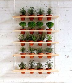 HomeMade Modern DIY Hanging Garden: This DIY vertical garden is an easy-to-make project that can turn a window into a beautiful and productive herb garden.