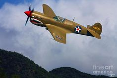 Tommy Anderson - Warhawk Curtiss P-40