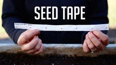 How to Make Seed Tape- Easy, inexpensive, with supplies you already have at home! Video Tutorial! https://www.youtube.com/gardenanswer https://www.facebook.com/gardenanswer