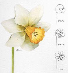 Dafadil Beautiful Flower Drawings, Flower Art Drawing, Flower Drawing Tutorials, Flower Sketches, Floral Drawing, Art Drawings Sketches, Painting & Drawing, Pencil Art Drawings, Easy Sketches