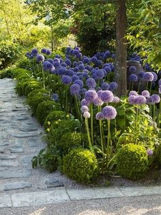 Architecture des Jardins et du Paysage, Design Urbain & Art Végétal WWW.HOUBLON.ORG #GardeningDesign