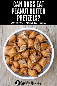 Can dogs eat pretzels? Keep your dog safe and find out what you need to know about dogs eating hard and soft pretzels, pretzel crisps, bread rolls, goldfish, peanut butter filled, and white chocolate fudge covered, yogurt covered, and mini pretzels. #dogsafety #doghealth #dogs #doglovers #doginformation #dogownertips #pethealth #pretzels