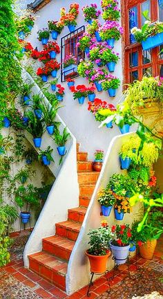 Cordoba, a place I can truly say is one of my favs!, The courtyard of an old andalusian house in Cordoba, Spain Garden Paths, Garden Bridge, Garden Landscaping, Garden Stairs, Garden Art, Dream Garden, Home And Garden, Garden Inspiration, Beautiful Gardens