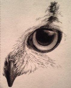Owl sketch by kayleigh foley - nov 2013 secret juice logo нарисовать сову, Tattoo Drawings, Cool Drawings, Drawing Sketches, Drawing Tips, Sketching, Drawing Ideas, Tattoo Sketches, Tattoo Illustrations, Drawing Tutorials