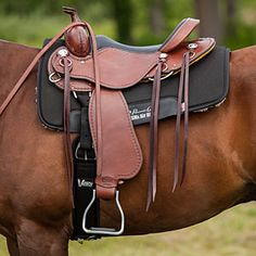 The Cashel Western Trail Saddle is designed to provide ultimate comfort. Find out if it's the right saddle for you and your horse with SmartPak's Test Ride program.