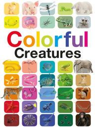 Explore the Rainbow of Animals  Ganeri's COLORFUL CREATURES is a triumph of color and a visual masterpiece for the eyes. This hardback 18 inch tall book reinforces the beauty and amazing splendor the animal kingdom provides.  Breathe in the artistry of real life photos of an enormous blue ocean of fish or enjoy the orange shimmer of a two-page spread depicting a monarch butterfly.  Each color starts with a big beautiful two-page spread showing an animal up close and personal. Many animals