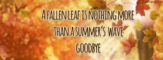 A Fallen Leaf Is Nothing More Than Summer's Wave Facebook Cover coverlayout.com