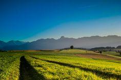 Gerzensee Landscape Pictures, Bern, All Over The World, Switzerland, Vineyard, Mountains, Nature, Travel, Outdoor