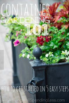 Love the idea of gardening but don't really have the yard space or spare time to dedicate to large gardening projects? Container gardening is a great alternative! These 5 easy steps will show you exactly how to get started whether you want to grow flowers, herbs, or vegetables!