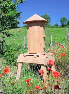 Outdoor Chairs, Outdoor Furniture, Outdoor Decor, Youtube Original, Raising Bees, Bee Keeping, Botany, Bird Feeders, Gardens