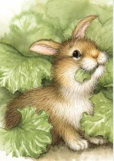 Cute illustrations - *Bunny by Lisa McCue* Bunny Art, Cute Bunny, Lapin Art, Art Fantaisiste, Illustration Mignonne, Art Mignon, Rabbit Art, Vintage Easter, Children's Book Illustration