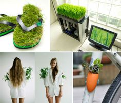 Strange Gardens: Greenery in 14 Unexpected Places