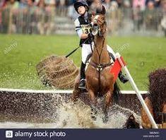 Horse Riding Fails High Resolution Stock Photography and Images ... Badminton Horse Trials, The Time Is Now, Horse Riding, Equestrian, Fails, Horses, Stock Photos, Photography, Fotografie