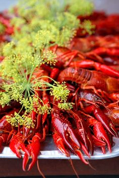 Crayfish party in Sweden - Traditional August festivities Summer Recipes, Great Recipes, Cooking Crab, Crawfish Party, Swedish Traditions, Norwegian Food, Scandinavian Food, Swedish Recipes, How To Cook Shrimp