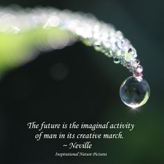 """""""The future is the imaginal activity of man in its creative march."""" - Neville"""