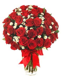 2 Cool Flowers - 3 Dozens of Red Roses, beautiful!  (http://stores.2coolflowers.com/3-dozens-of-red-roses/)