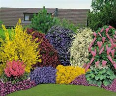 33 Beautiful Flower Beds Adding Bright Centerpieces to Yard Landscaping and Garden Design Blumenbeet Amazing Gardens, Beautiful Gardens, Beautiful Flowers, Beautiful Beds, Garden Shrubs, Flowering Shrubs, Evergreen Shrubs, Traditional Landscape, Neo Traditional