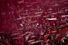 """""""dizem q somos loucos da cabeça, amámos o Benfica com certeza""""  #CarregaBenfica pic.twitter.com/hhaYfD2h8i"""