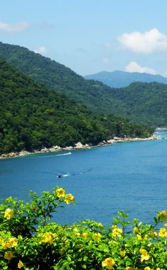 Discover how to travel to Puerto Vallarta, Mexico and see the beautiful Sierra Madre mountains.