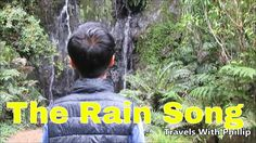 The Rain song, Zero project Kauri Tree, New Zealand, Rain, Songs, Auckland, City, Music, Travelling, Youtube