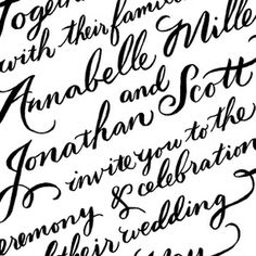 Molly Jacques illustration and hand lettering