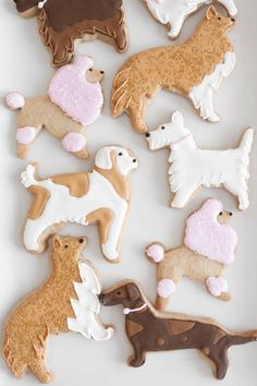 Puppy Party with DIY Birthday Party Decorations dog cut-out cookies Dog Themed Parties, Puppy Birthday Parties, Puppy Party, Dog Birthday, Birthday Cookies, 50th Birthday Party Decorations, Dog Cookies, Sugar Cookies, Cookie Decorating