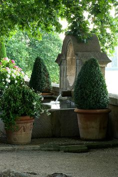potted boxwood, fountain... simply lovely
