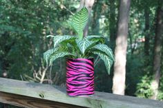 Zebra Print in Pink Planter or Centerpiece by by BirdFeederGuy