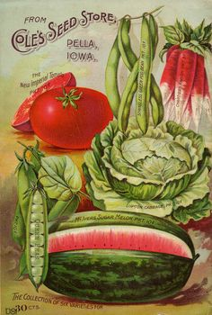 Seed Catalogs from Smithsonian Institution Libraries - Cole's Seed Store - Pella, Iowa Vintage Diy, Images Vintage, Vintage Type, Vintage Pictures, Vintage Printable, Vintage Labels, Garden Catalogs, Seed Catalogs, Plant Catalogs