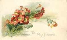 TO MY FRIEND  orange yellow centered polyanthus