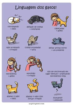 These 16 Web Comics Know How You Really Feel About Owning a Cat - Comics from around the Web Love Pet, I Love Cats, Crazy Cats, Cute Cats, Funny Cats, Animals And Pets, Funny Animals, Cute Animals, Living With Cats