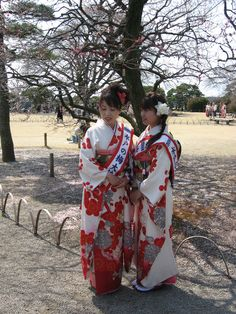 Not geisha. They're local pageant winner and runner up...lol