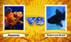 assista agora ao vivo 2 peixes jogando Street Fighter no Twitch