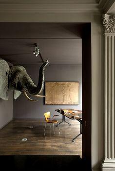 why not put en elephant head in a tiny study?