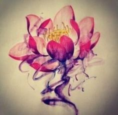 Lotus Flower Tattoo,The lotus flower starts as a small flower down at the bottom of a pond in the mud and muck. It slowly grows up towards the waters surface continually moving towards the light. Once it come to the surface of the water the lotus flower begins to blossom and turn into a beautiful by elizabeth