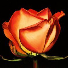 Rose II Poster by Linda Mcvay at AllPosters.com
