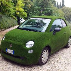 FIAT 500 covered with grass