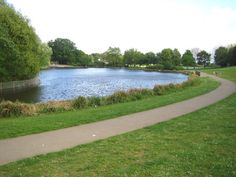 Fairlands valley park in stevenage this is an ideal place as there are fields wooded areas and a lake! Stevenage, Valley Park, World Traveler, The Locals, Places To See, Fields, Golf Courses, England, Image
